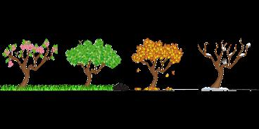 seasons-158601_1280